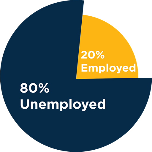 Life Science PhDs Pie Chart, 80% Unemployed, 20% Employed